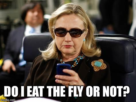 Hillary Clinton Cellphone Meme | DO I EAT THE FLY OR NOT? | image tagged in memes,hillary clinton cellphone | made w/ Imgflip meme maker