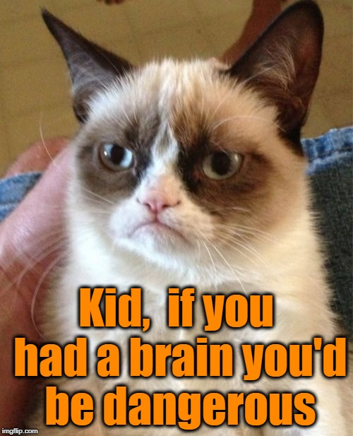Grumpy Cat Meme | Kid,  if you had a brain you'd be dangerous | image tagged in memes,grumpy cat | made w/ Imgflip meme maker