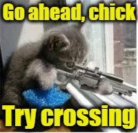Go ahead, chick Try crossing | made w/ Imgflip meme maker