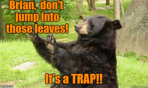 How about no bear | Brian,  don't jump into those leaves! It's a TRAP!! | image tagged in how about no bear | made w/ Imgflip meme maker