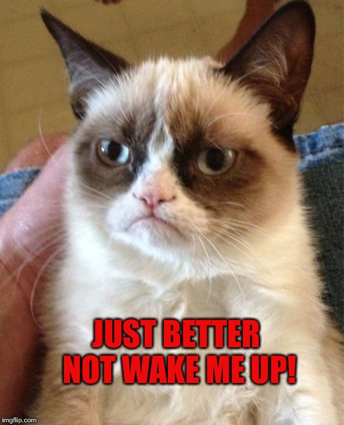 Grumpy Cat Meme | JUST BETTER NOT WAKE ME UP! | image tagged in memes,grumpy cat | made w/ Imgflip meme maker