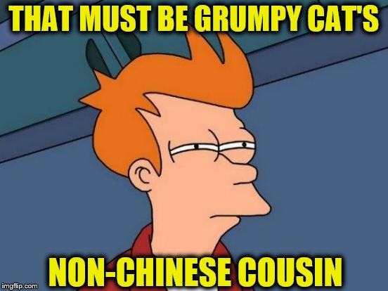 Futurama Fry Meme | THAT MUST BE GRUMPY CAT'S NON-CHINESE COUSIN | image tagged in memes,futurama fry | made w/ Imgflip meme maker