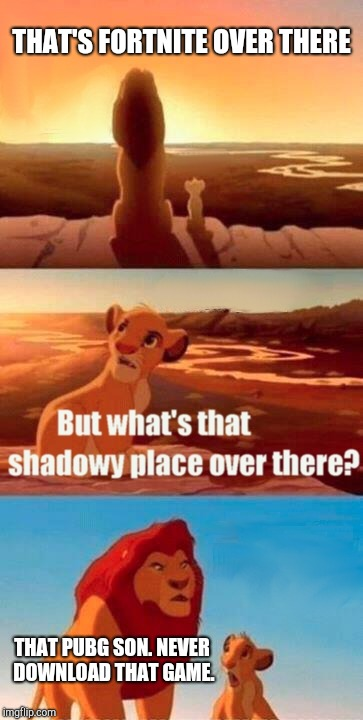 Simba Shadowy Place Meme | THAT'S FORTNITE OVER THERE THAT PUBG SON. NEVER DOWNLOAD THAT GAME. | image tagged in memes,simba shadowy place | made w/ Imgflip meme maker