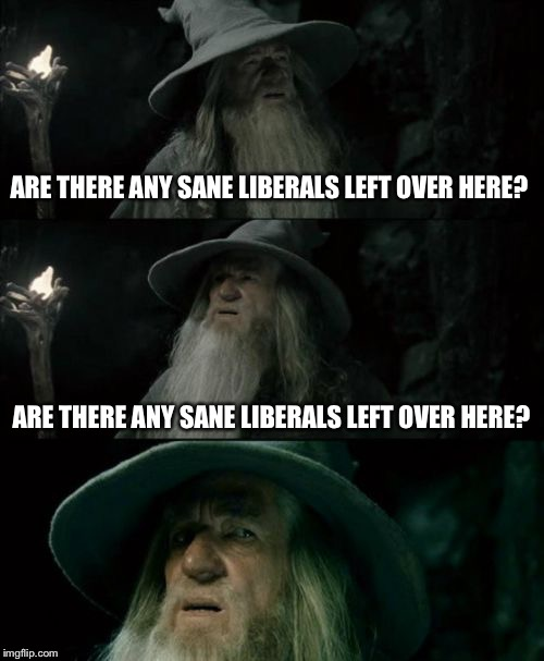 Confused Gandalf Meme | ARE THERE ANY SANE LIBERALS LEFT OVER HERE? ARE THERE ANY SANE LIBERALS LEFT OVER HERE? | image tagged in memes,confused gandalf | made w/ Imgflip meme maker