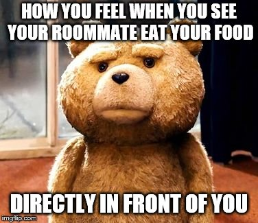 TED |  HOW YOU FEEL WHEN YOU SEE YOUR ROOMMATE EAT YOUR FOOD; DIRECTLY IN FRONT OF YOU | image tagged in memes,ted | made w/ Imgflip meme maker
