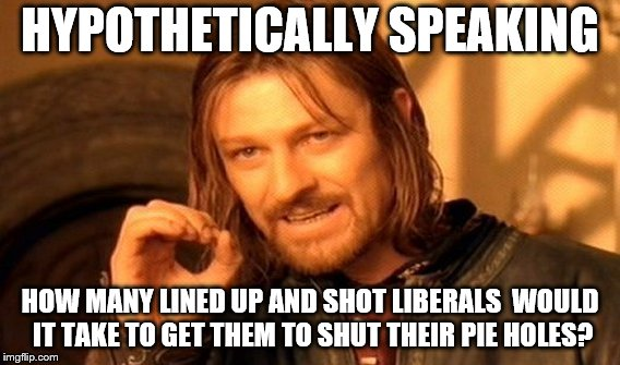 One Does Not Simply Meme | HYPOTHETICALLY SPEAKING HOW MANY LINED UP AND SHOT LIBERALS  WOULD IT TAKE TO GET THEM TO SHUT THEIR PIE HOLES? | image tagged in memes,one does not simply | made w/ Imgflip meme maker