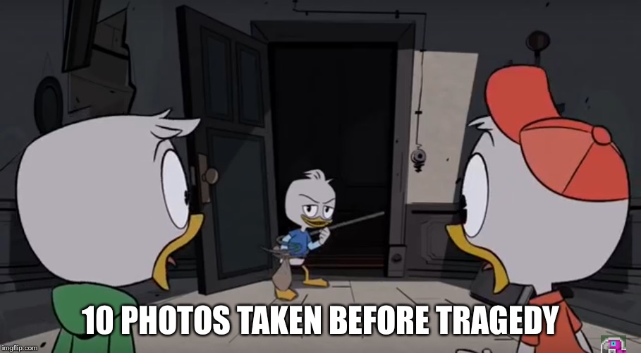 10 photos taken before tragedy | 10 PHOTOS TAKEN BEFORE TRAGEDY | image tagged in ducks,random | made w/ Imgflip meme maker