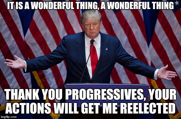 Donald Trump | IT IS A WONDERFUL THING, A WONDERFUL THING THANK YOU PROGRESSIVES, YOUR ACTIONS WILL GET ME REELECTED | image tagged in donald trump | made w/ Imgflip meme maker