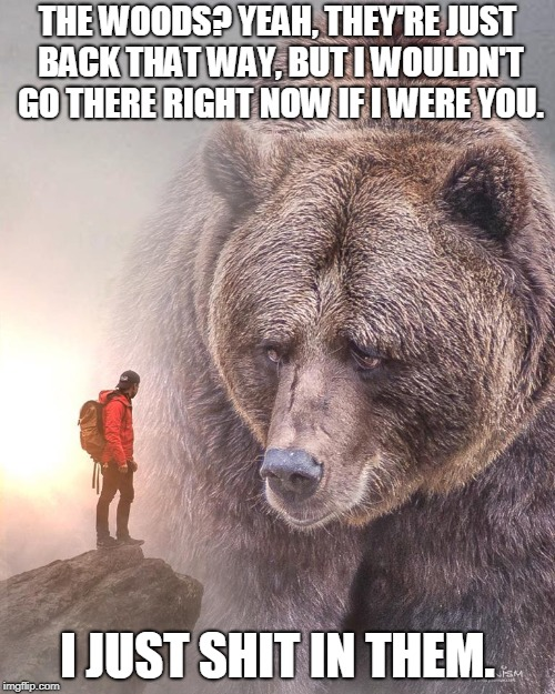 The Smell Is UnBEARable. | THE WOODS? YEAH, THEY'RE JUST BACK THAT WAY, BUT I WOULDN'T GO THERE RIGHT NOW IF I WERE YOU. I JUST SHIT IN THEM. | image tagged in bear,shit,woods,memes | made w/ Imgflip meme maker