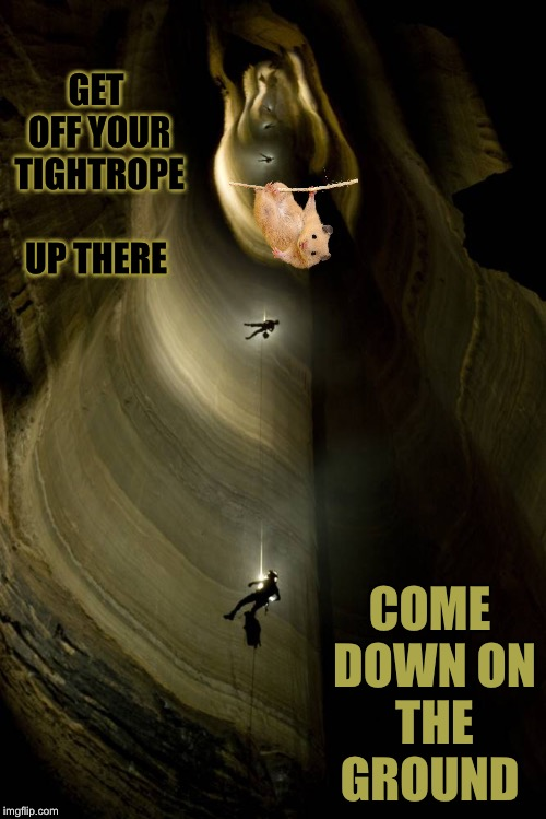 GET OFF YOUR TIGHTROPE UP THERE COME DOWN ON THE GROUND | made w/ Imgflip meme maker