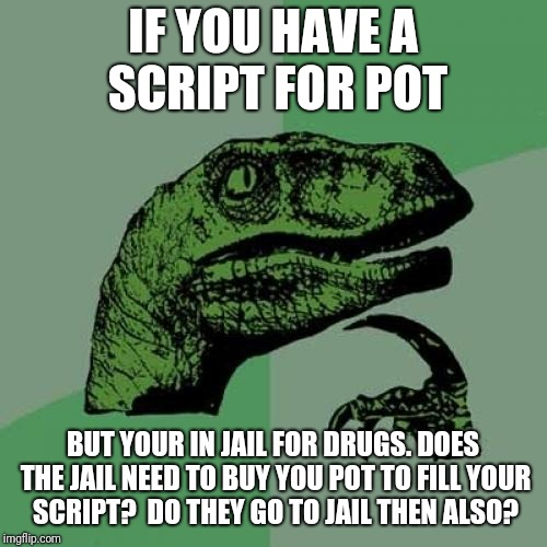 Pot questions | IF YOU HAVE A SCRIPT FOR POT BUT YOUR IN JAIL FOR DRUGS. DOES THE JAIL NEED TO BUY YOU POT TO FILL YOUR SCRIPT?  DO THEY GO TO JAIL THEN ALS | image tagged in memes,philosoraptor,smoke weed everyday | made w/ Imgflip meme maker
