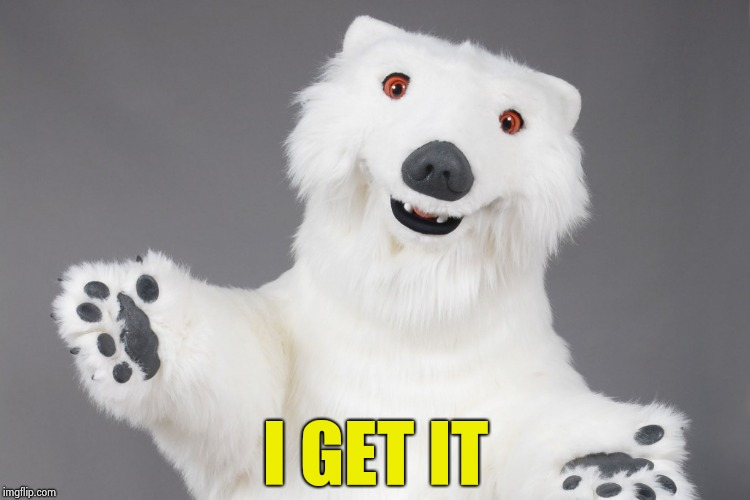 Polar Bear | I GET IT | image tagged in polar bear | made w/ Imgflip meme maker