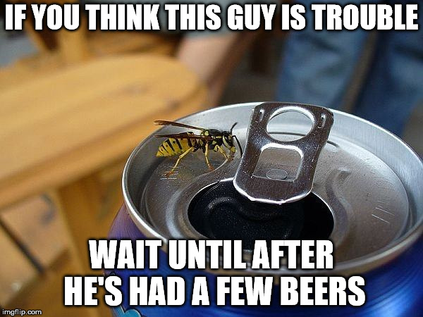I hate mean drunks | IF YOU THINK THIS GUY IS TROUBLE WAIT UNTIL AFTER HE'S HAD A FEW BEERS | image tagged in yellow jacket,wasp,beer,meanness | made w/ Imgflip meme maker