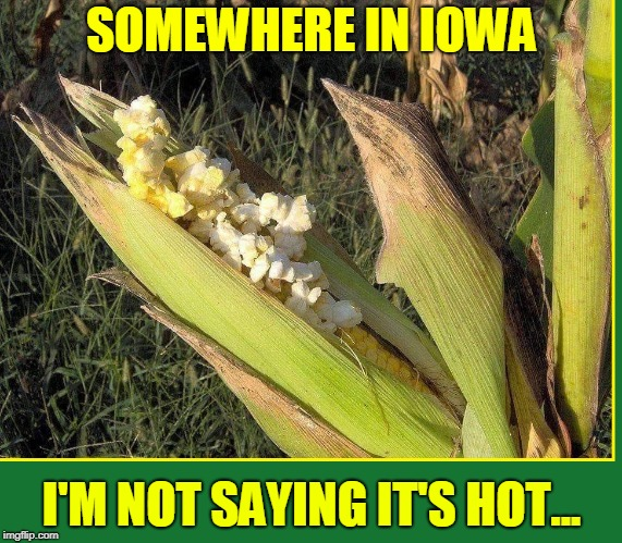 Hot Time in the Old Town Tonight | SOMEWHERE IN IOWA I'M NOT SAYING IT'S HOT... | image tagged in vince vance,iowa,corn,corny joke,the heat,so hot right now | made w/ Imgflip meme maker