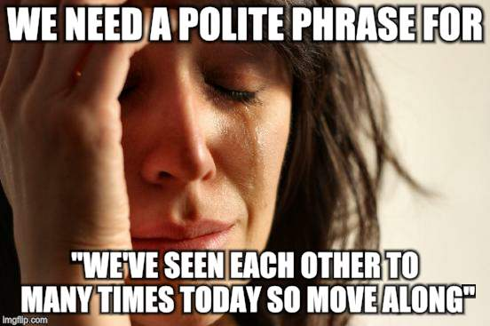 "First World Problems Meme | WE NEED A POLITE PHRASE FOR ""WE'VE SEEN EACH OTHER TO MANY TIMES TODAY SO MOVE ALONG"" 