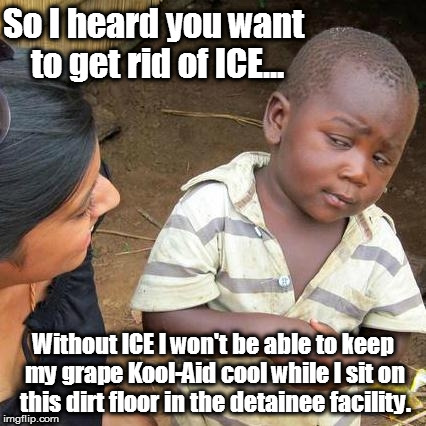 Keep Kool and ICE on... | So I heard you want to get rid of ICE... Without ICE I won't be able to keep my grape Kool-Aid cool while I sit on this dirt floor in the de | image tagged in memes,third world skeptical kid,illegal immigration,kool-aid | made w/ Imgflip meme maker