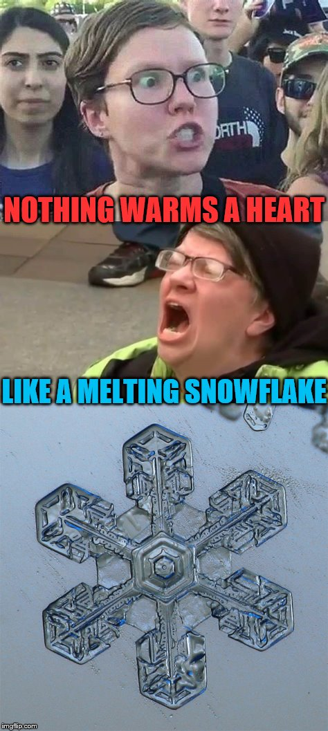 Nothing Warms a Heart Like a Melting Snowflake | NOTHING WARMS A HEART LIKE A MELTING SNOWFLAKE | image tagged in triggered liberal,political meme,memes,crazy eyes,snowflakes,liberals | made w/ Imgflip meme maker