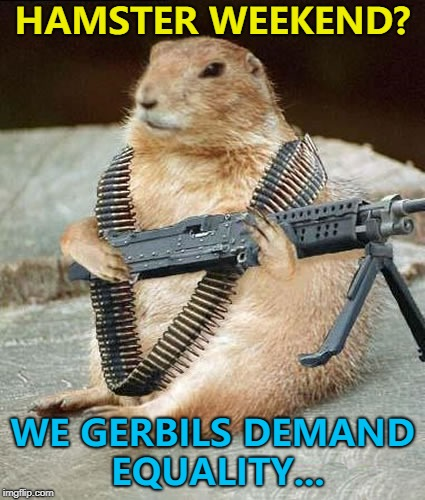 Hamster Weekend July 6-8, a bachmemeguy2, 1forpeace & Shen_Hiroku_Nagato joint production :) | HAMSTER WEEKEND? WE GERBILS DEMAND EQUALITY... | image tagged in lemmywinks gerbil gay rights,memes,hamster weekend,gerbils,animals | made w/ Imgflip meme maker