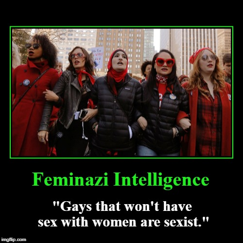"Feminazi Intelligence | Feminazi Intelligence | ""Gays that won't have sex with women are sexist."" 