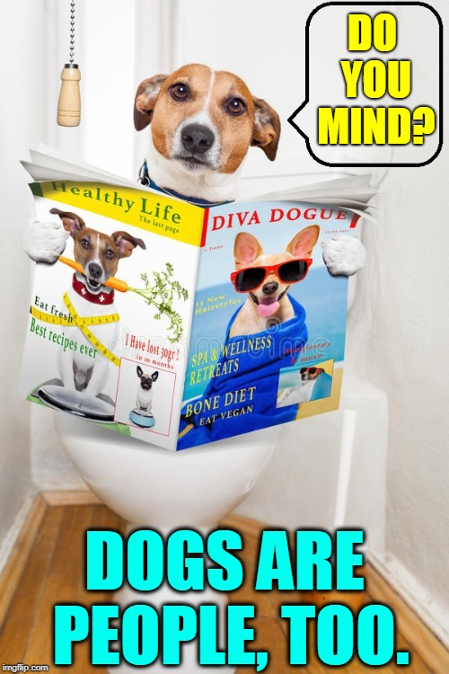 A Bowser Movement | DO YOU MIND? DOGS ARE PEOPLE, TOO. | image tagged in vince vance,dogs,toilets,toilet humor,privacy,going to the toilet | made w/ Imgflip meme maker