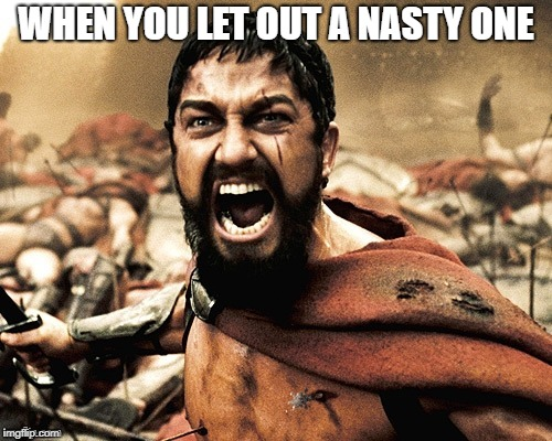 WHEN YOU LET OUT A NASTY ONE | image tagged in 300 | made w/ Imgflip meme maker