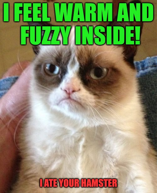 Hamster Weekend July 6-8, a bachmemeguy2, 1forpeace & Shen_Hiroku_Nagato extravaganza! | I FEEL WARM AND FUZZY INSIDE! I ATE YOUR HAMSTER | image tagged in memes,grumpy cat,hamster weekend | made w/ Imgflip meme maker