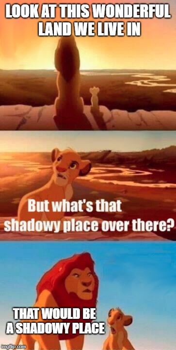 Shadowy Place | LOOK AT THIS WONDERFUL LAND WE LIVE IN THAT WOULD BE A SHADOWY PLACE | image tagged in memes,simba shadowy place | made w/ Imgflip meme maker