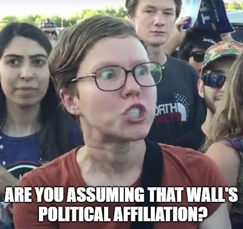Triggered feminist | ARE YOU ASSUMING THAT WALL'S POLITICAL AFFILIATION? | image tagged in triggered feminist | made w/ Imgflip meme maker