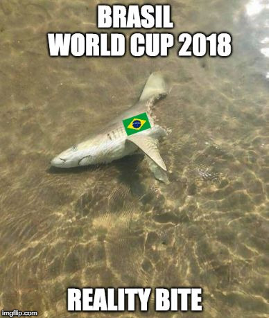 image tagged in brasil world cup | made w/ Imgflip meme maker