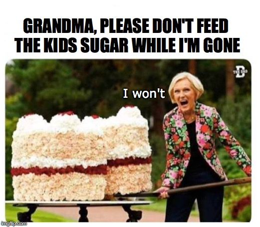 Grandma As Baby Sitter | GRANDMA, PLEASE DON'T FEED THE KIDS SUGAR WHILE I'M GONE I won't | image tagged in grandma,sweets,babysitter | made w/ Imgflip meme maker