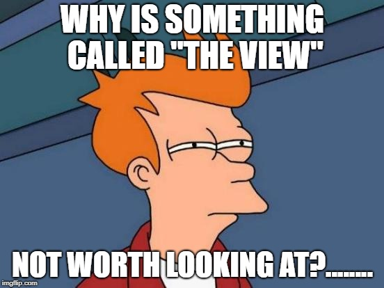 "Futurama Fry Meme | WHY IS SOMETHING CALLED ""THE VIEW"" NOT WORTH LOOKING AT?........ 