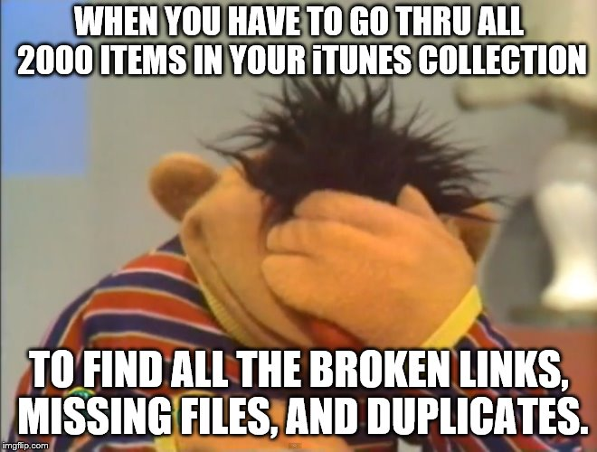 iTunes Sucks! | WHEN YOU HAVE TO GO THRU ALL 2000 ITEMS IN YOUR iTUNES COLLECTION TO FIND ALL THE BROKEN LINKS, MISSING FILES, AND DUPLICATES. | image tagged in face palm ernie | made w/ Imgflip meme maker
