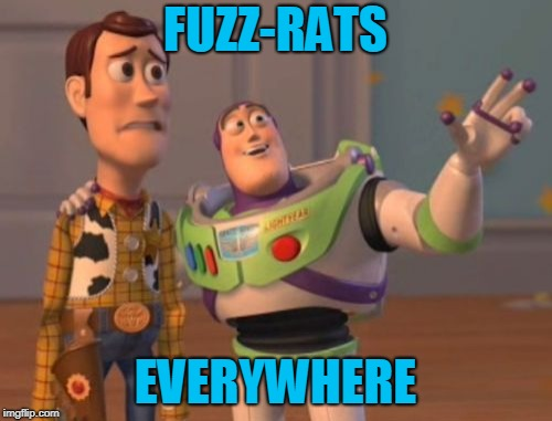X, X Everywhere Meme | FUZZ-RATS EVERYWHERE | image tagged in memes,x x everywhere | made w/ Imgflip meme maker