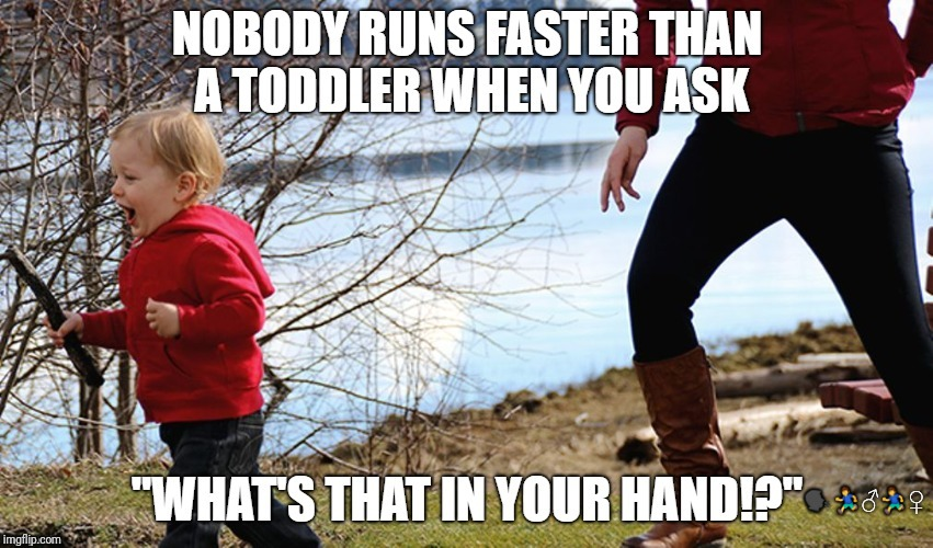 image tagged in toddler run | made w/ Imgflip meme maker