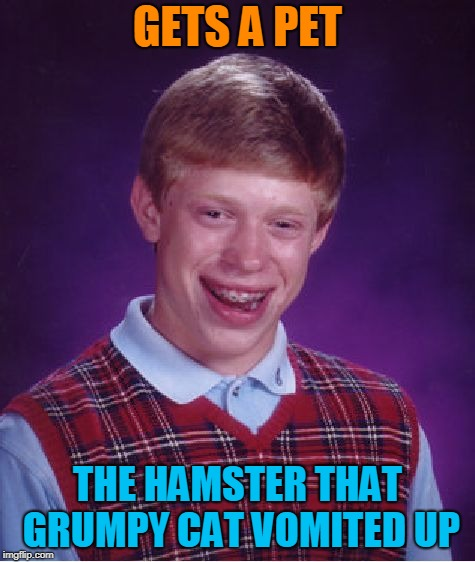 Bad Luck Brian Meme | GETS A PET THE HAMSTER THAT GRUMPY CAT VOMITED UP | image tagged in memes,bad luck brian | made w/ Imgflip meme maker