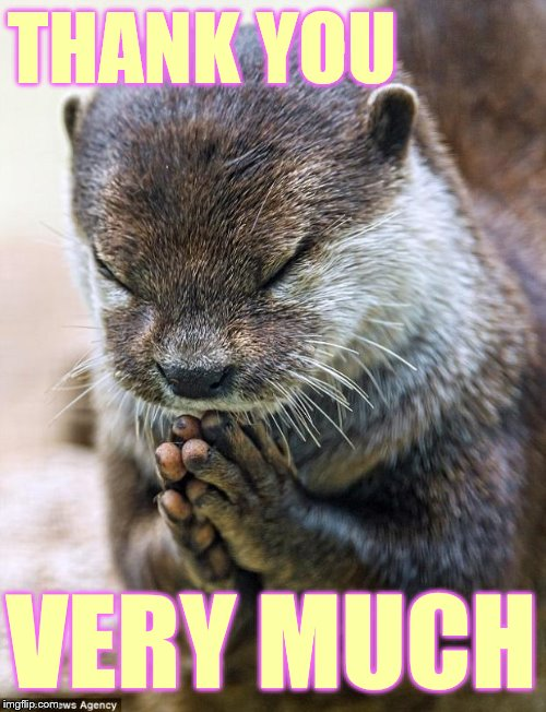 Thank you Lord Otter | THANK YOU VERY MUCH | image tagged in thank you lord otter | made w/ Imgflip meme maker