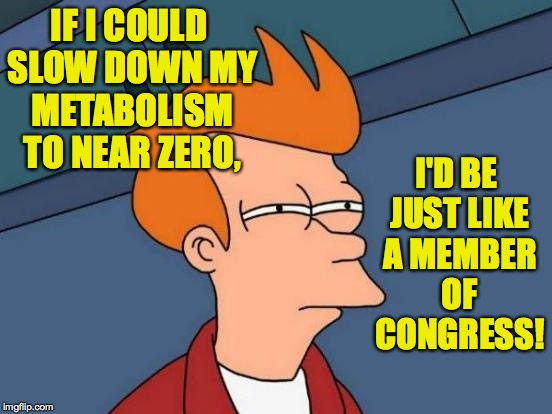 Futurama Fry Meme | IF I COULD SLOW DOWN MY METABOLISM TO NEAR ZERO, I'D BE JUST LIKE A MEMBER OF CONGRESS! | image tagged in memes,futurama fry,congress | made w/ Imgflip meme maker
