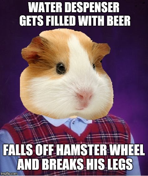 Hamster week. July 6-8  Meme inspired from 1forpeace. Thanks dash for template. | WATER DESPENSER GETS FILLED WITH BEER FALLS OFF HAMSTER WHEEL AND BREAKS HIS LEGS | image tagged in memes,hamster week | made w/ Imgflip meme maker