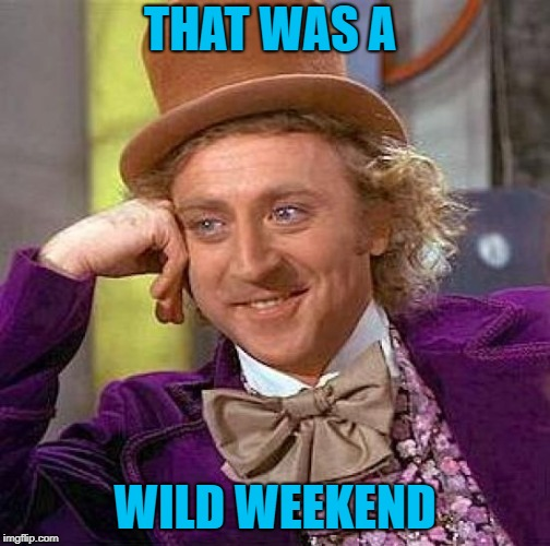 Creepy Condescending Wonka Meme | THAT WAS A WILD WEEKEND | image tagged in memes,creepy condescending wonka | made w/ Imgflip meme maker