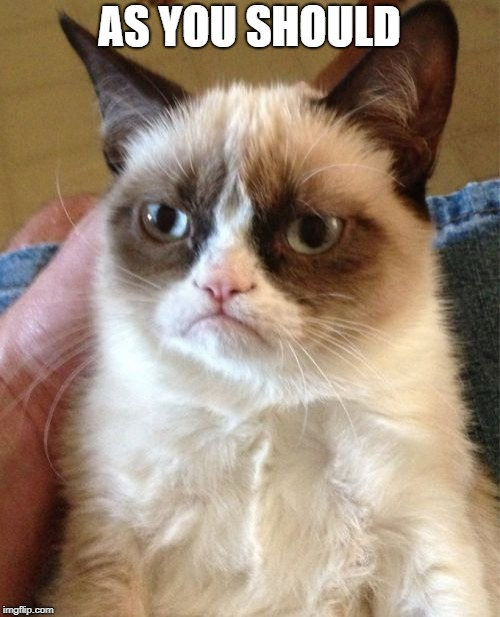 Grumpy Cat Meme | AS YOU SHOULD | image tagged in memes,grumpy cat | made w/ Imgflip meme maker