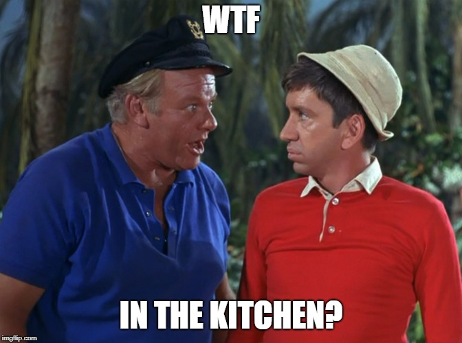 gilligan | WTF IN THE KITCHEN? | image tagged in gilligan | made w/ Imgflip meme maker