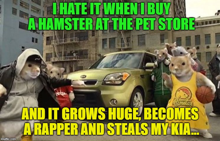 Hamster Weekend | I HATE IT WHEN I BUY A HAMSTER AT THE PET STORE AND IT GROWS HUGE, BECOMES A RAPPER AND STEALS MY KIA... | image tagged in hamster weekend | made w/ Imgflip meme maker
