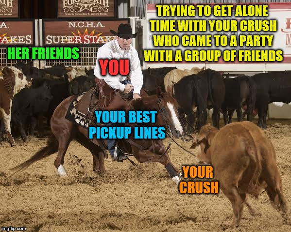 Separating the Crush from the herd (A Supercowgirl request) | TRYING TO GET ALONE TIME WITH YOUR CRUSH WHO CAME TO A PARTY WITH A GROUP OF FRIENDS HER FRIENDS YOUR CRUSH YOU YOUR BEST PICKUP LINES | image tagged in cutting horse,memes,crush,pickup lines,alone time,personal challenge | made w/ Imgflip meme maker