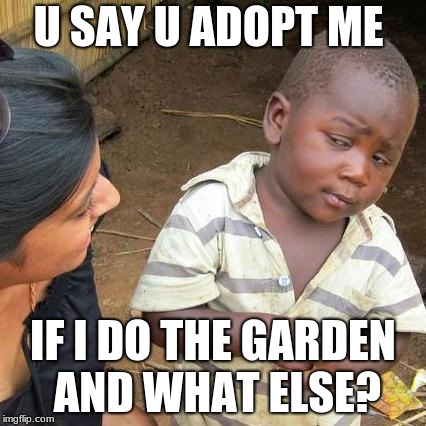 Third World Skeptical Kid Meme | U SAY U ADOPT ME IF I DO THE GARDEN AND WHAT ELSE? | image tagged in memes,third world skeptical kid | made w/ Imgflip meme maker
