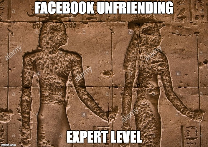 FACEBOOK UNFRIENDING EXPERT LEVEL | made w/ Imgflip meme maker