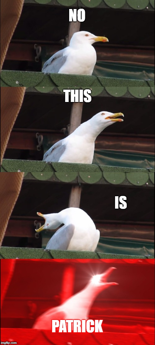 Inhaling Seagull Meme | NO THIS IS PATRICK | image tagged in memes,inhaling seagull | made w/ Imgflip meme maker