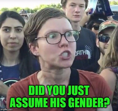 Triggered feminist | DID YOU JUST ASSUME HIS GENDER? | image tagged in triggered feminist | made w/ Imgflip meme maker