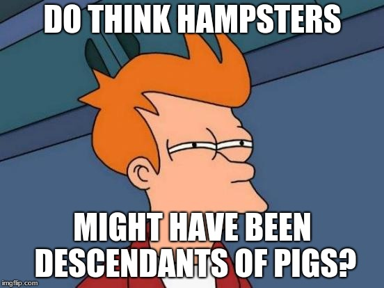 Futurama Fry Meme | DO THINK HAMPSTERS MIGHT HAVE BEEN DESCENDANTS OF PIGS? | image tagged in memes,futurama fry | made w/ Imgflip meme maker
