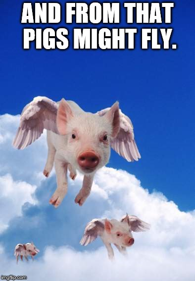 AND FROM THAT PIGS MIGHT FLY. | made w/ Imgflip meme maker