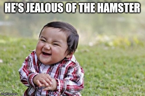Evil Toddler Meme | HE'S JEALOUS OF THE HAMSTER | image tagged in memes,evil toddler | made w/ Imgflip meme maker